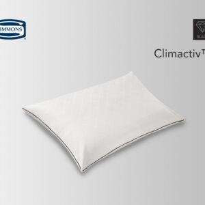 Climactiv™