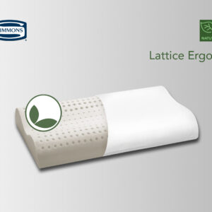 Lattice Ergon