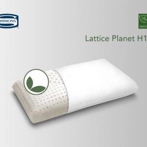 Lattice Planet H10